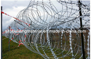 Razor Wire Fence/Barbed Wire Fence /Razor Wire