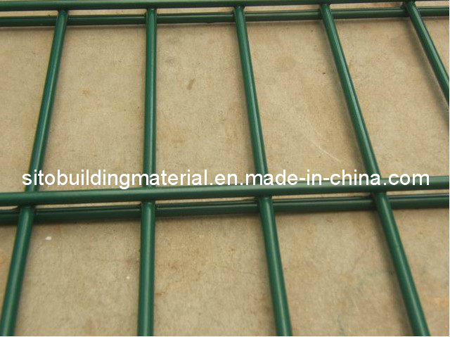 Double Wire Fence/PVC Coated Fence Netting/Welded Wire Mesh Fence/Fence Panel/Fence Netting